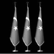 Salon Bayrakları (4)